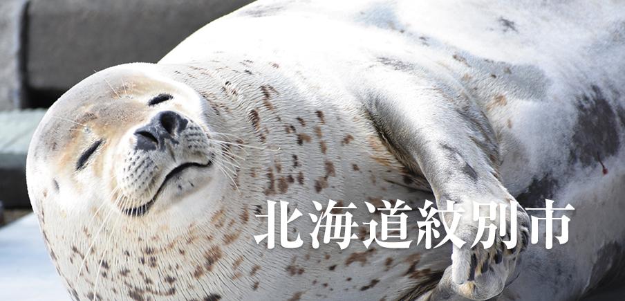 流氷・アザラシ・クリオネ・ホタテ・かまぼこ・オホーツクの海の幸。紋別を見て知って味わって!