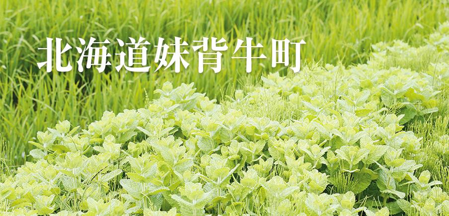 農薬使用を抑える独自の取り組みでつくられた、プレミアムなお米