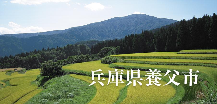 里山の豊かな自然や清流が育む最高峰の神戸ビーフや但馬牛、 農産物から加工品までが多彩に