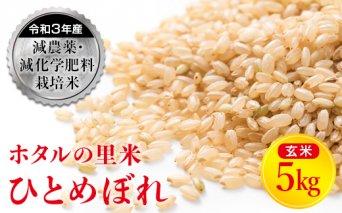 令和3年産【ホタルの里米】減農薬・減化学肥料栽培米 ひとめぼれ 玄米 5kg