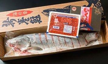 オホーツク海の秋鮭親子セット【ふるさと納税】14011-30025025