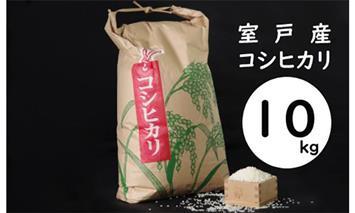 TA001室戸産新米コシヒカリ10kg