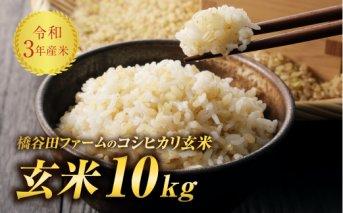 令和3年産 コシヒカリ 玄米 10kg