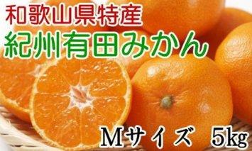 ZD6108_【厳選】紀州有田みかん 5kg (Mサイズ・赤秀)