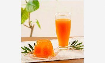 G1004-YAS ■丸ごとみかんが3個入った!田村みかんフルーツまるごとゼリー&みかん果汁100%ジュースセット