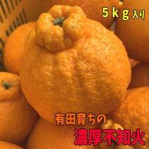 AB6034_有田育ちの濃厚不知火(通称デコポン)(ご家庭用)約5kg