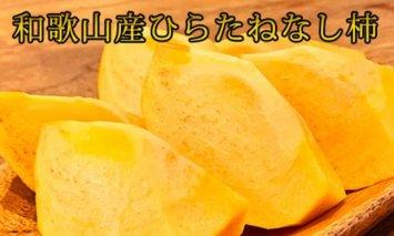 G6044_和歌山秋の味覚平核無柿(ひらたねなしがき)約7.5㎏