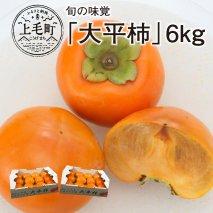 数量限定200セット!旬の味覚「大平柿」6kg  T03401