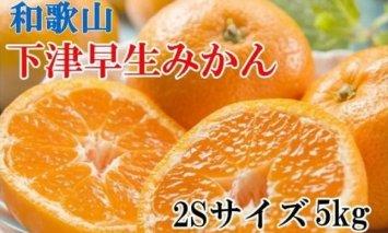 ZD6237_【産直】下津早生みかん 5kg (2Sサイズ)