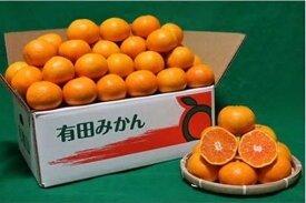 ZE6336_和歌山の有田みかん5kg(2Sサイズ)