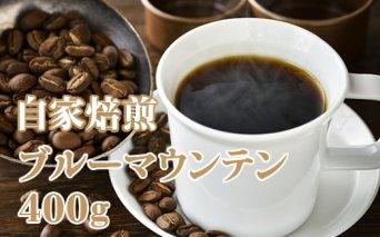 D40-036 【先行予約】自家焙煎 ブルーマウンテン(ストレート)400g