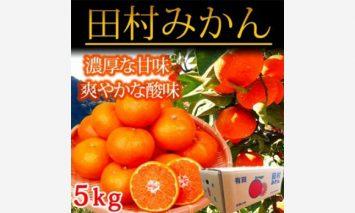 G6020_高級ブランド田村みかん 5kg