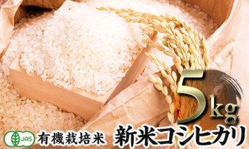 令和2年産新米 JAS認定 有機栽培米 コシヒカリ 精米 5kg