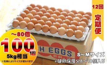 F80-012 【定期便】業務用S~Mサイズ鶏卵100個~80個(5㎏)12回