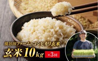 令和2年産 <定期便> コシヒカリ 玄米 10kg×3回 (2カ月に1回)