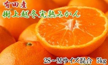 ZD6196_【濃厚・まろやか】樹上越冬完熟みかん 5kg(2S~Mサイズ混合・赤秀)