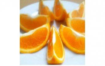 F6102_バレンシアオレンジ 5kg サイズおまかせ(2L~S)