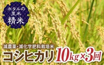 令和3年産【ホタルの里米】<定期便>減農薬・減化学肥料栽培米コシヒカリ精米10kg×3回(2ケ月に1回)