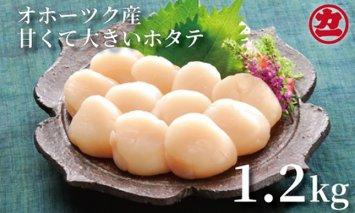 12-11 オホーツク産大粒ホタテ(1.2kg)