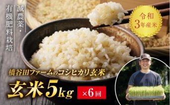 令和3年産<定期便> 減農薬・有機肥料栽培コシヒカリ 玄米 5kg×6回(2カ月に1回)
