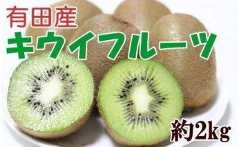 ZD6233_有田でとれた完熟キウイフルーツ 約2kg (M~3Lサイズ混合)