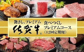H500-001 【定期便】佐賀牛食べ尽くしプレミアム12回毎月コース