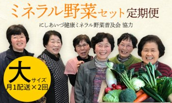 西会津ミネラル野菜セット定期便(大)2回