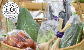 道の駅厳選!新鮮野菜詰め合わせセット