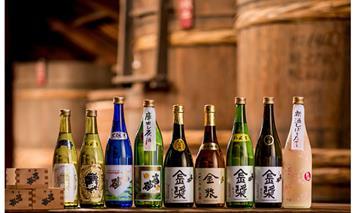 F100-015 【定期便】 (年6回/隔月お届け) 日本酒 小柳酒造 お届け便・偶数月