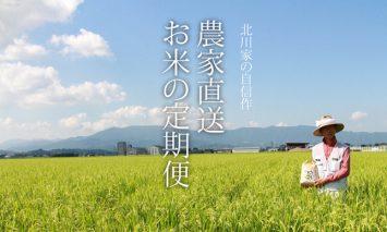 F100-051 【定期便】(12ヶ月連続お届け)北川農産直送、お米の定期便(5kg×12回)