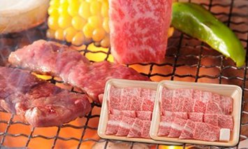 飛騨牛 焼肉用ロース1kg(500g×2)
