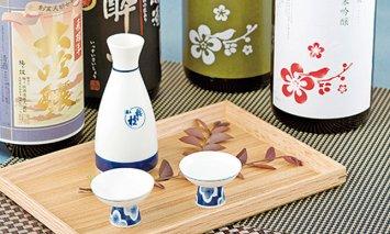 T809 香り豊かな純米吟醸・吟醸酒のプチ贅沢一升瓶2本
