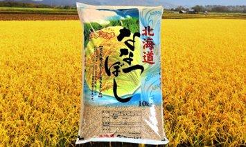 Q-06T007 北海道産ななつぼし【玄米】10kg×6回 定期便