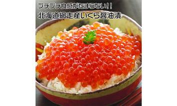 北海道 網走産 冷凍いくら醤油漬 500g【ふるさと納税】14012-30034127