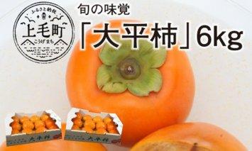 数量限定200セット!旬の味覚「大平柿」6kg