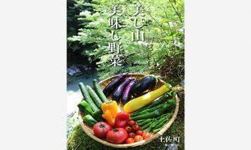 zy1土佐れいほく野菜