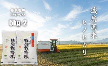 B15-110 もっちり艶々「減農薬米」ひのひかり(5㎏×2袋)しもむら農園