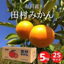 ZE6340_【2Sサイズ】和歌山 湯浅町産 田村みかん 5kg ※着日指定不可