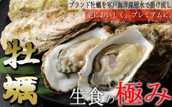 殻付き牡蠣旅する牡蠣プレミアムオイスター室戸海洋深層水 室津8~10個入り