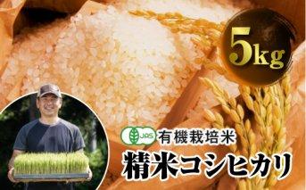 令和3年産 JAS認定 有機栽培米 コシヒカリ 精米 5kg