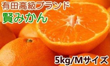 ZD6167_有田ブランド 賢みかん 5kg(Mサイズ・赤秀)【数量限定】