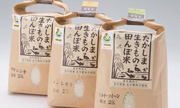 【T-131】グリーン藤栄 生きもの田んぼ米食べ比べセットA