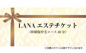B10-149 LANAエステチケット(幹細胞育毛コース40分)