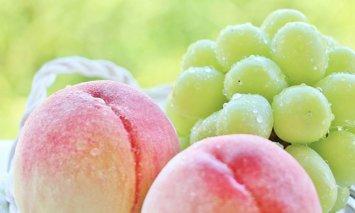 D-23 今が旬!丸亀季節の果物セット(3~5種類)