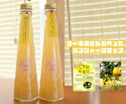 【上毛町産レモン使用】ジンジャーシロップ 2本セット