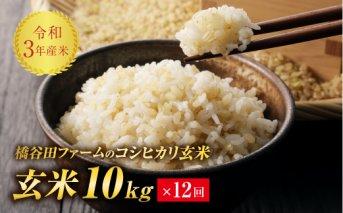 令和3年産 <定期便> コシヒカリ 玄米 10kg×12回 (1カ月に1回)
