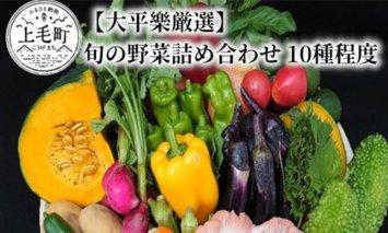 【大平樂厳選】旬の朝採れ野菜詰め合わせ 10種程度