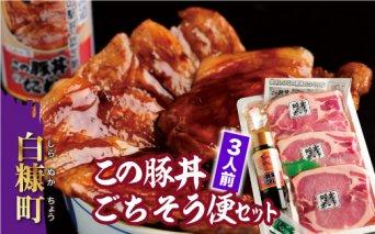 【新型コロナ被害支援】【特別価格】この豚丼 ごちそう便セット【3人前】
