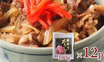 飛騨牛 牛丼の具12食セット