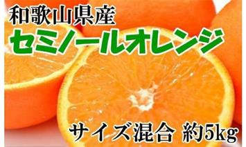 ZD6031-YAS■[2020年4月~発送]【数量限定】和歌山有田産セミノールオレンジ約5kg(サイズ混合)